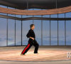 Karate Lessons With Roger Lacombe – Punching