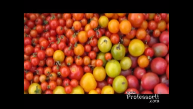Nutritious Diet Tips On Video 10 – Super Tomato