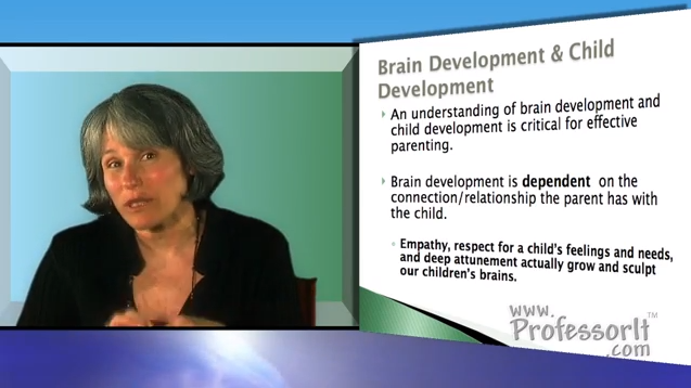 Parenting Advice on video – Brain and Child Development