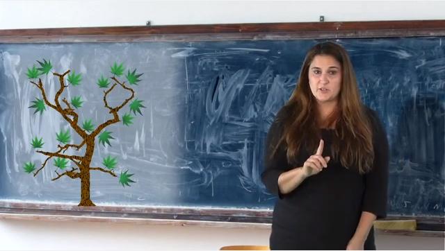 Social Studies Lessons On Seasons